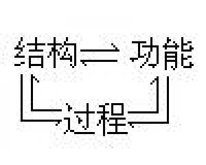 结构、过程与功能的相互